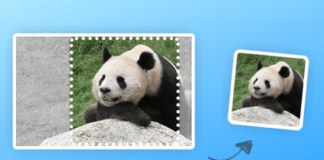 How to easily resize images in MacOS, Windows and online
